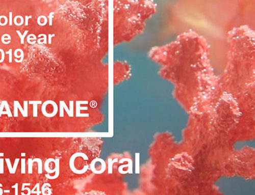 Pantone Color of the Year 2019 16-1546 : Living Coral