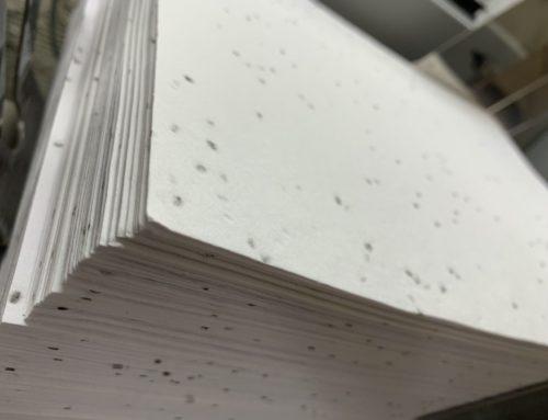 Papier ensemencé 220gr/m2 éco aux graines de basilic