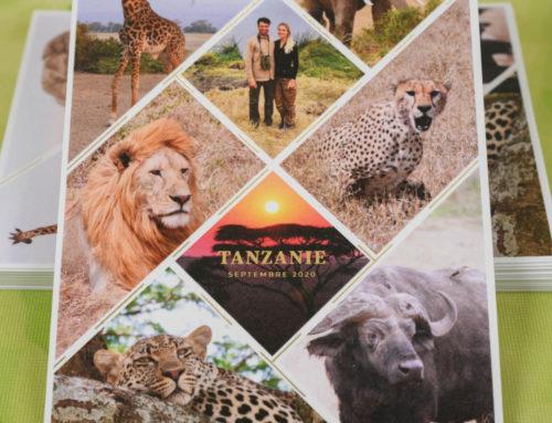 Remerciement de mariage pêle-mêle photo safari voyage de noce – Dorure à chaud Or brillant de précision